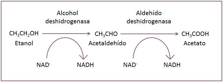 resaca-reaccion-quimica-